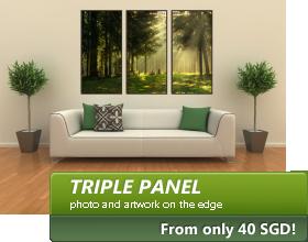 Triple Panel